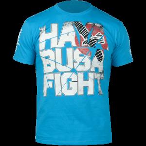 Hayabusa Fight - Aqua